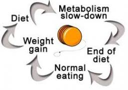 dieting-cycle